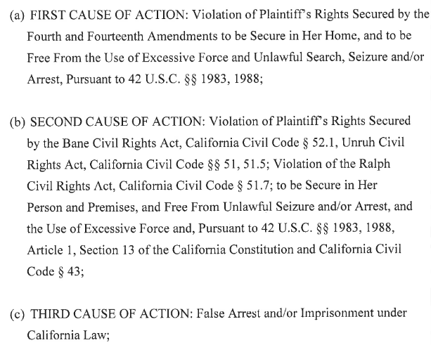 Kern Lawsuits Causes of Action 1.png