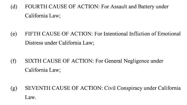 Kern Lawsuits Causes of Action 2.png